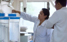 two people in laboratory
